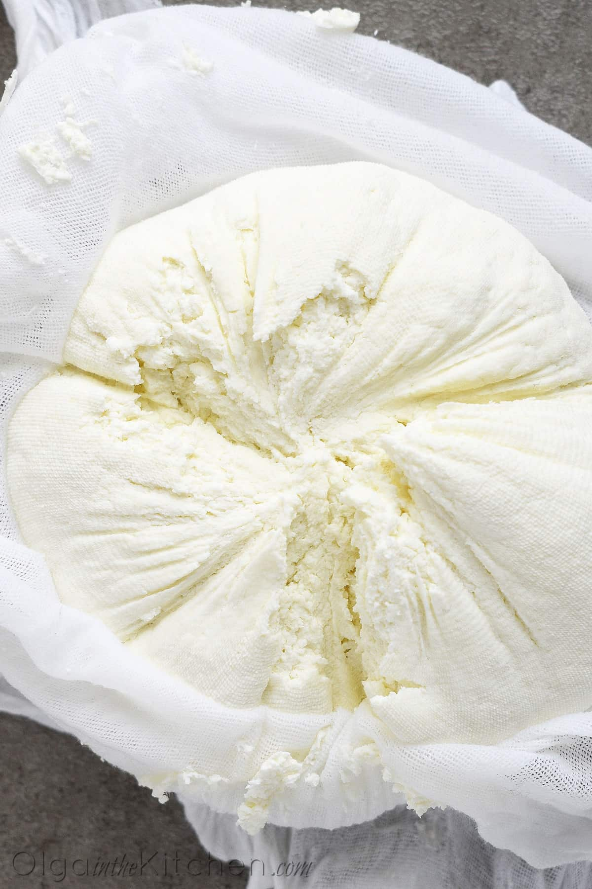 farmer's cheese recipe
