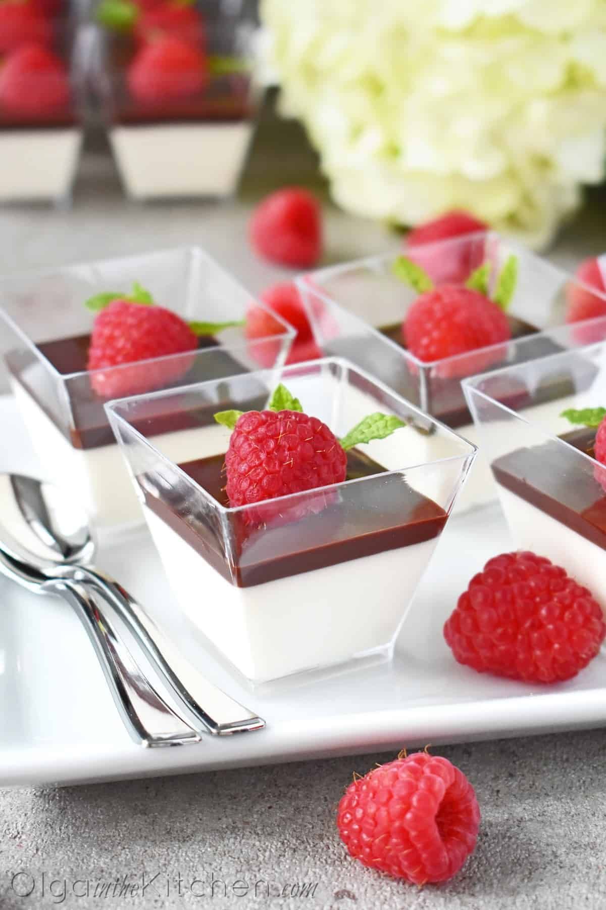Panna Cotta with Chocolate Jello - olgainthekitchen