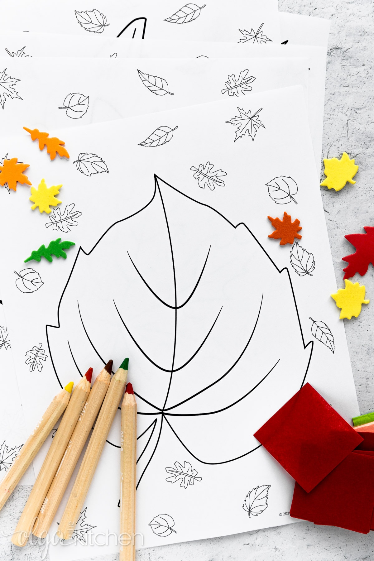 Print off these FREE printable autumn leaves coloring pages for a fall rainy day or a simple activity to do with your kids! #printables #coloringpages #olgainthekitchen #kidsactivity #fallcoloring #autumncoloring #school