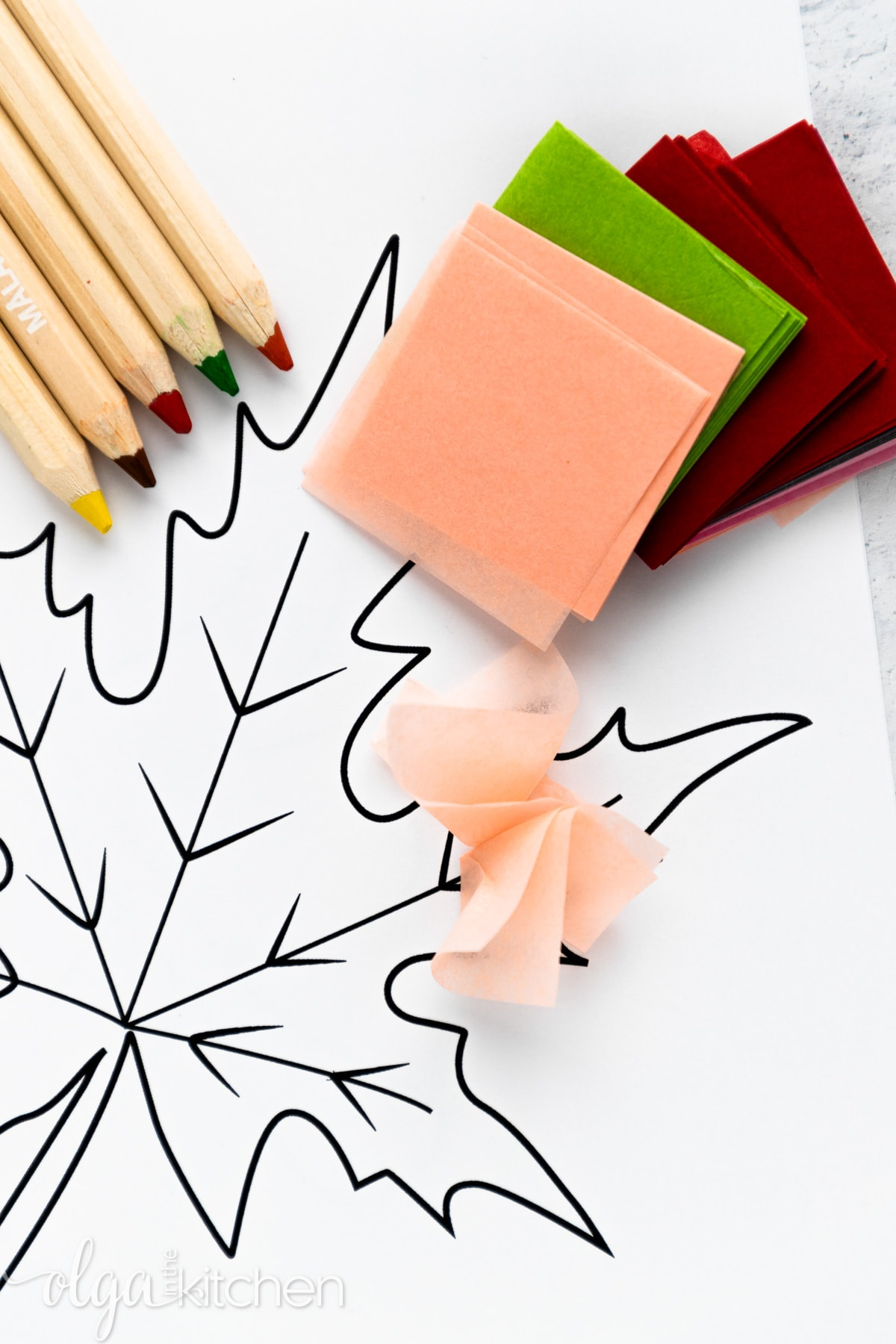 Print off these FREE printable simpleautumn leaves coloring pagesfor a fall rainy day or a simple activity with your kids! #printables #coloringpages #olgainthekitchen #fallactivity #fallcoloring #thanksgiving #crafts #diy